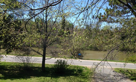 View of the river from upstairs hall window.