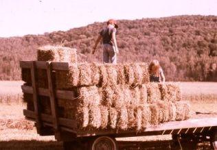 Erica and Robin on the hay wagon, circa 1980